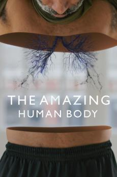 The Amazing Human Body: show-poster2x3