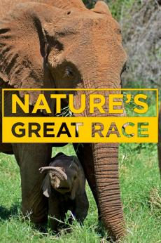 Nature's Great Race: show-poster2x3